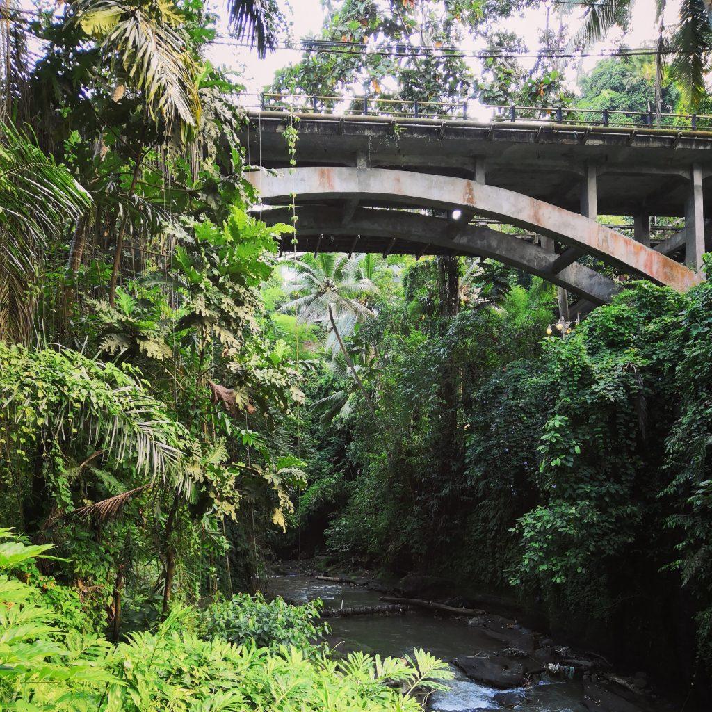 Bali - under bridge